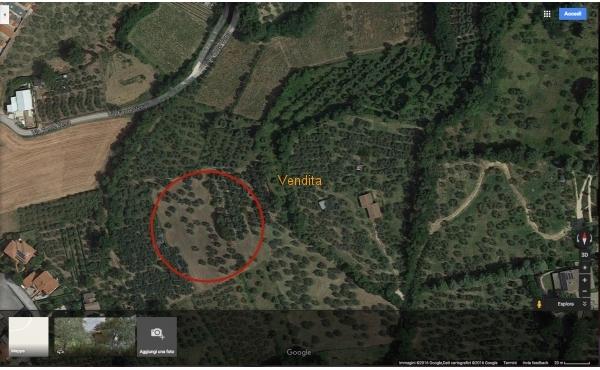 Terreno Agricolo ad Assisi