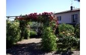 29199, Agriturismo ad Assisi