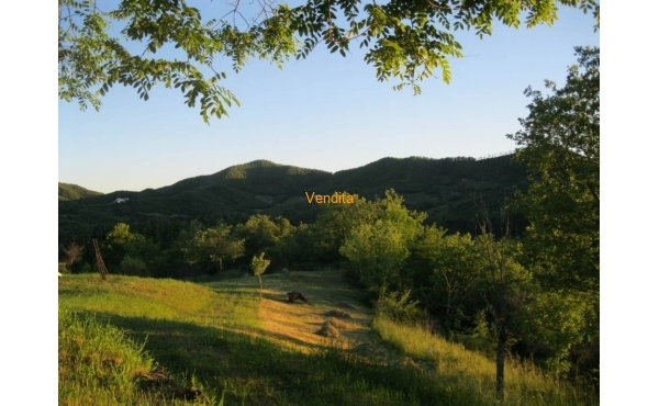Farm for sale Gubbio