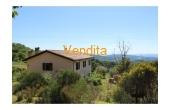 CBI060-372-1296970, Casa indipendente Assisi